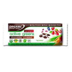 Active Greens Protein Barrita Cubierta de Chocolate Bio 75g