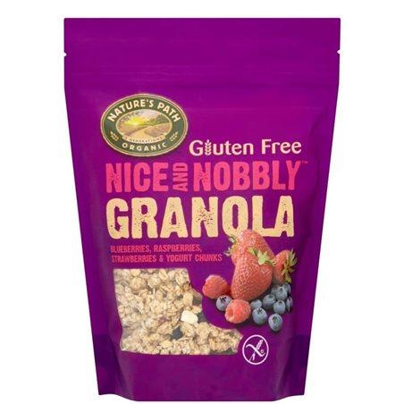 Granola de Arándanos, Frambuesas y Fresas Bio Sin Gluten 312g